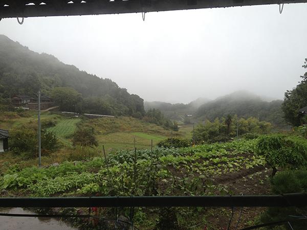 九州のとある集落の古民家に短期移住してみた。